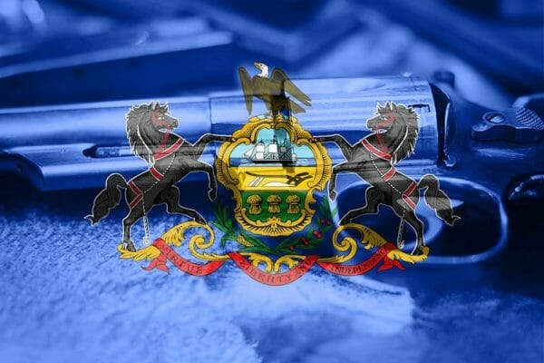 Pennsylvania Appeals Court Finds Life in 10th Amendment to Declare PLCAA Void, iStock-884188404